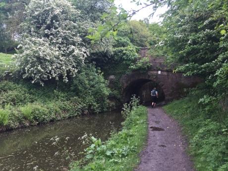 canal-path
