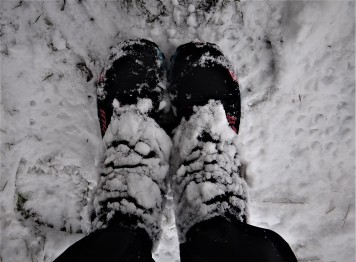 snowy-shoes